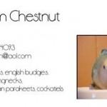 Sam Chestnut